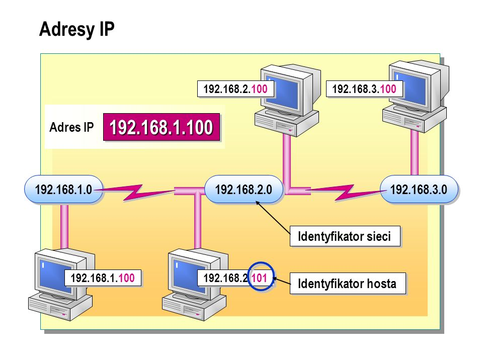 Adresy IP 192.168.2.100. 192.168.3.100. 192.168.1.100. Adres IP. 192.168.1.0. 192.168.2.0. 192.168.3.0.