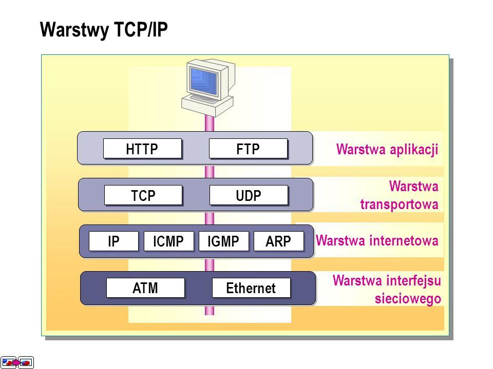 Warstwa interfejsu sieciowego