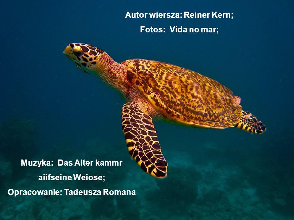 Autor wiersza: Reiner Kern; Muzyka: Das Alter kammr