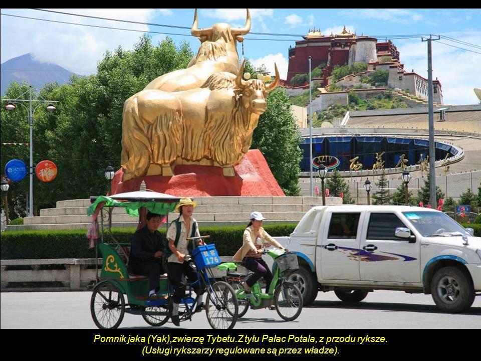 Pomnik jaka (Yak),zwierzę Tybetu.Z tyłu Pałac Potala, z przodu ryksze.