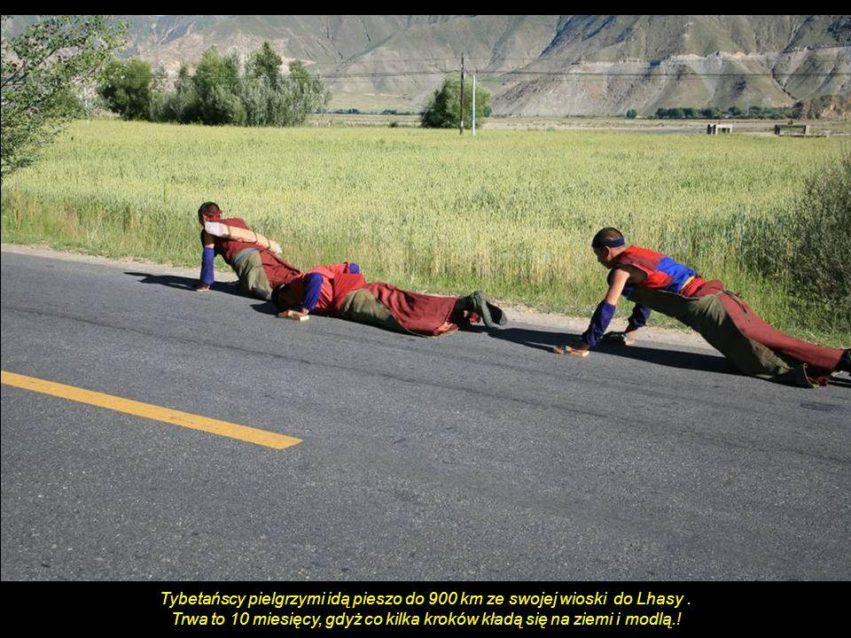 Tybetańscy pielgrzymi idą pieszo do 900 km ze swojej wioski do Lhasy .