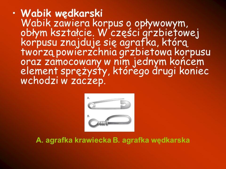 A. agrafka krawiecka B. agrafka wędkarska