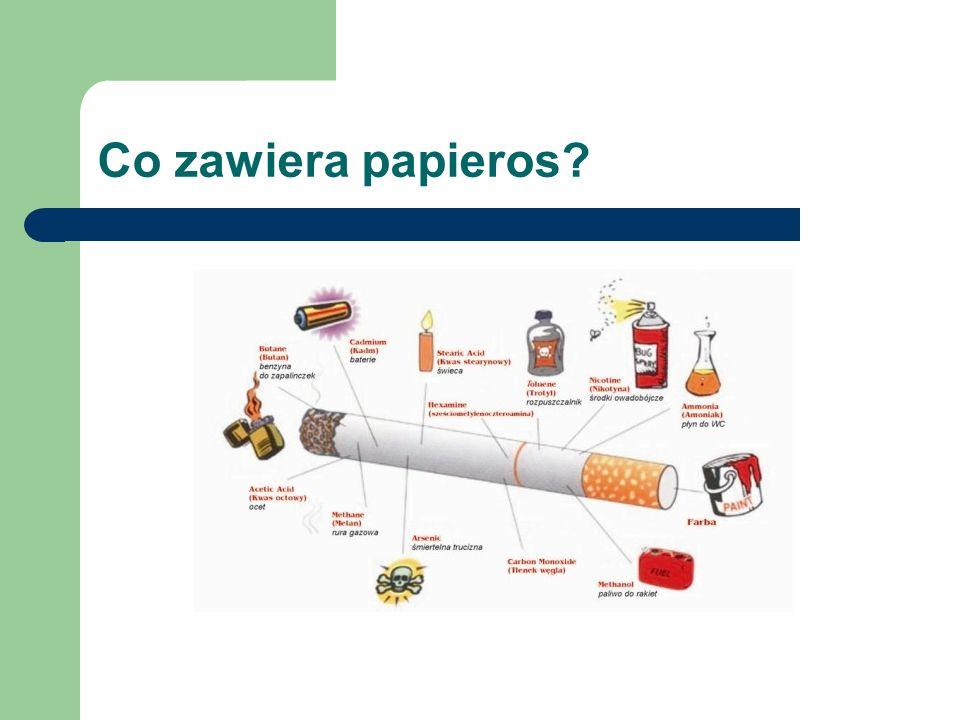 Co zawiera papieros