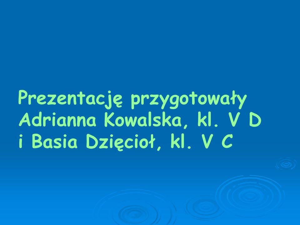 Prezentację przygotowały Adrianna Kowalska, kl. V D
