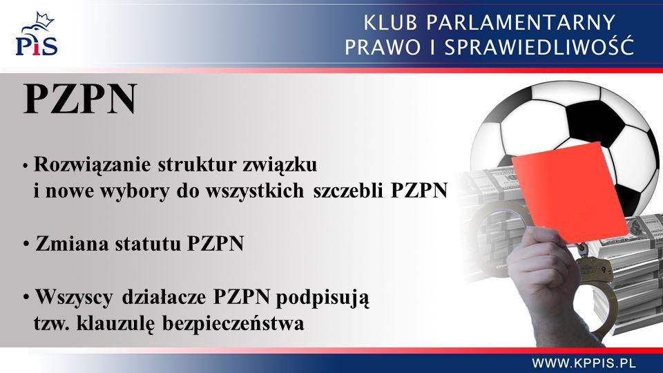 PZPN i nowe wybory do wszystkich szczebli PZPN Zmiana statutu PZPN