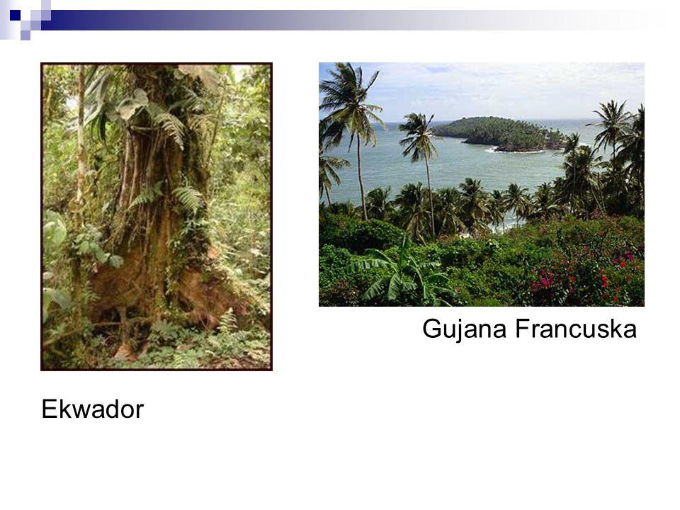 Gujana Francuska Ekwador