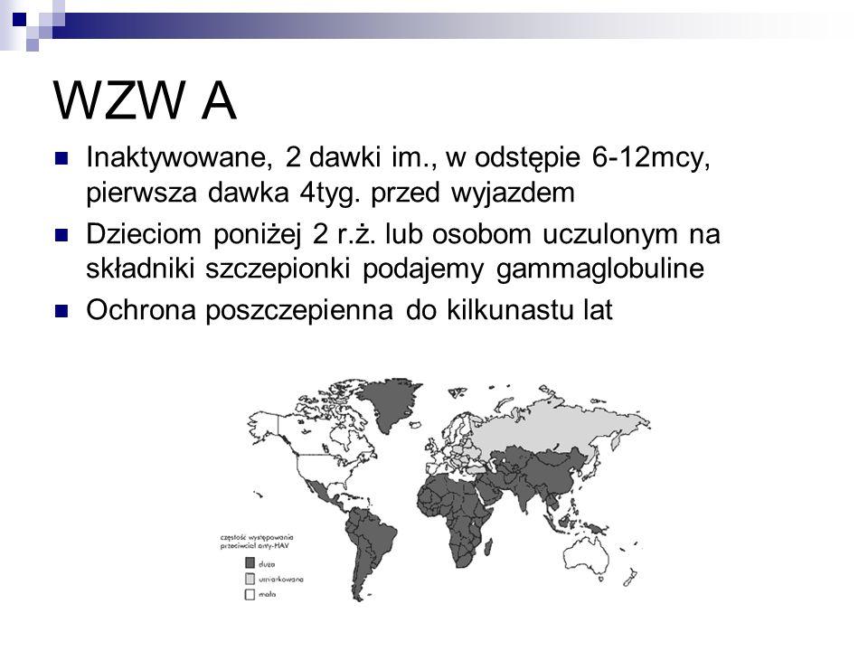 WZW A Inaktywowane, 2 dawki im., w odstępie 6-12mcy, pierwsza dawka 4tyg. przed wyjazdem.