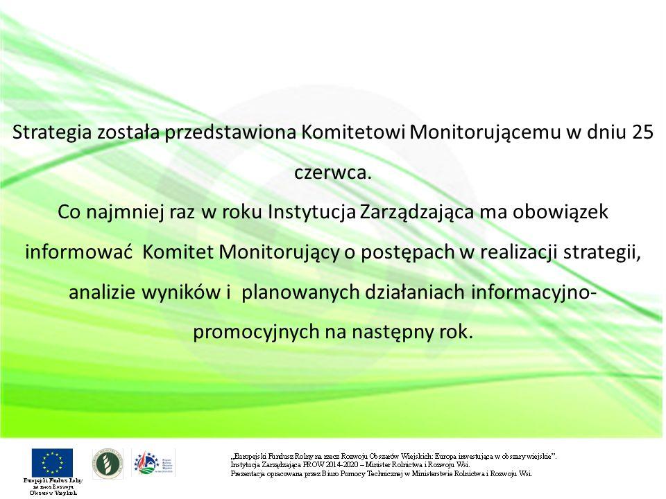 Strategia została przedstawiona Komitetowi Monitorującemu w dniu 25 czerwca.