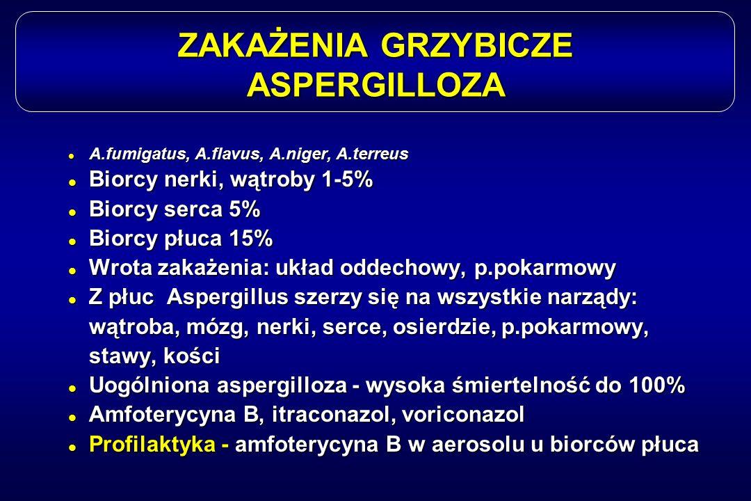 ZAKAŻENIA GRZYBICZE ASPERGILLOZA