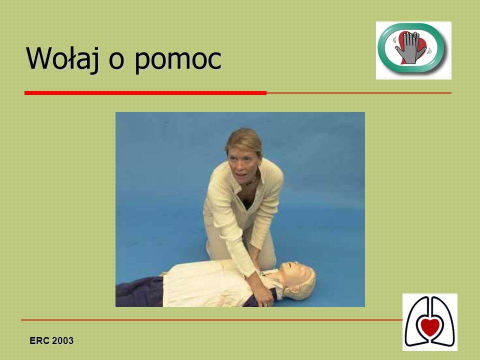 Wołaj o pomoc ERC 2003