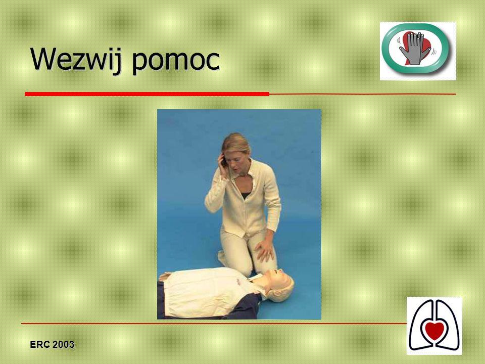 Wezwij pomoc ERC 2003