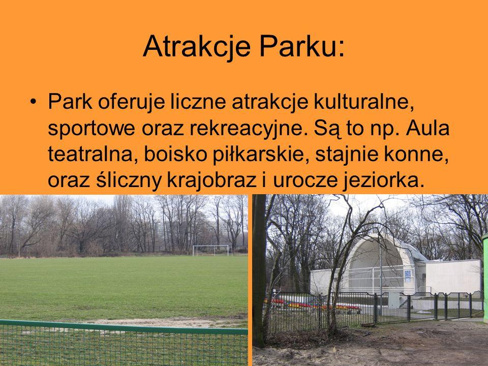 Atrakcje Parku: