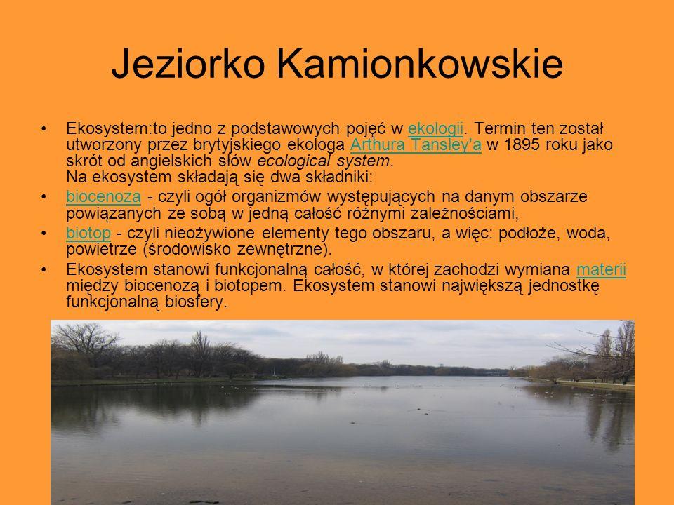 Jeziorko Kamionkowskie