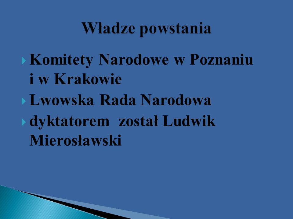Władze powstania Komitety Narodowe w Poznaniu i w Krakowie