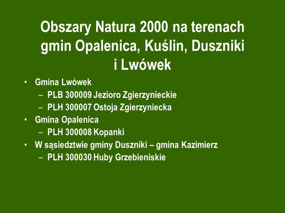 Obszary Natura 2000 na terenach gmin Opalenica, Kuślin, Duszniki i Lwówek