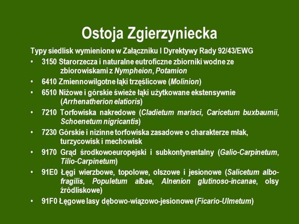 Ostoja Zgierzyniecka Typy siedlisk wymienione w Załączniku I Dyrektywy Rady 92/43/EWG.