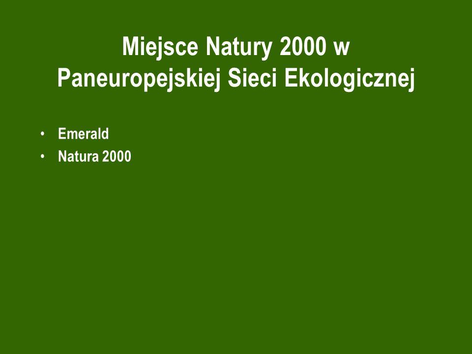 Miejsce Natury 2000 w Paneuropejskiej Sieci Ekologicznej