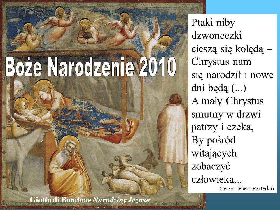 Ptaki niby dzwoneczki cieszą się kolędą – Chrystus nam się narodził i nowe dni będą (...) A mały Chrystus smutny w drzwi patrzy i czeka, By pośród witających zobaczyć człowieka...