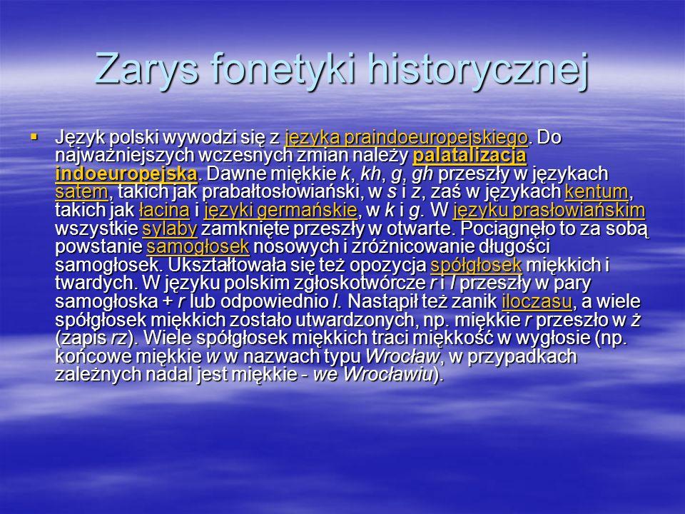 Zarys fonetyki historycznej