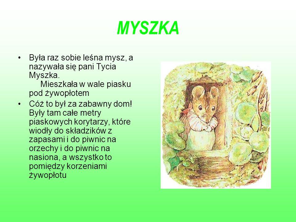MYSZKA Była raz sobie leśna mysz, a nazywała się pani Tycia Myszka. Mieszkała w wale piasku pod żywopłotem.