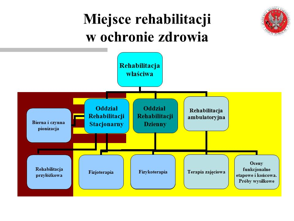 Miejsce rehabilitacji w ochronie zdrowia