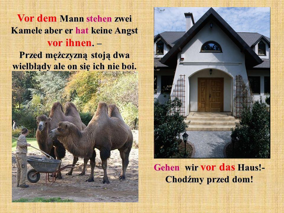 Gehen wir vor das Haus!- Chodźmy przed dom!