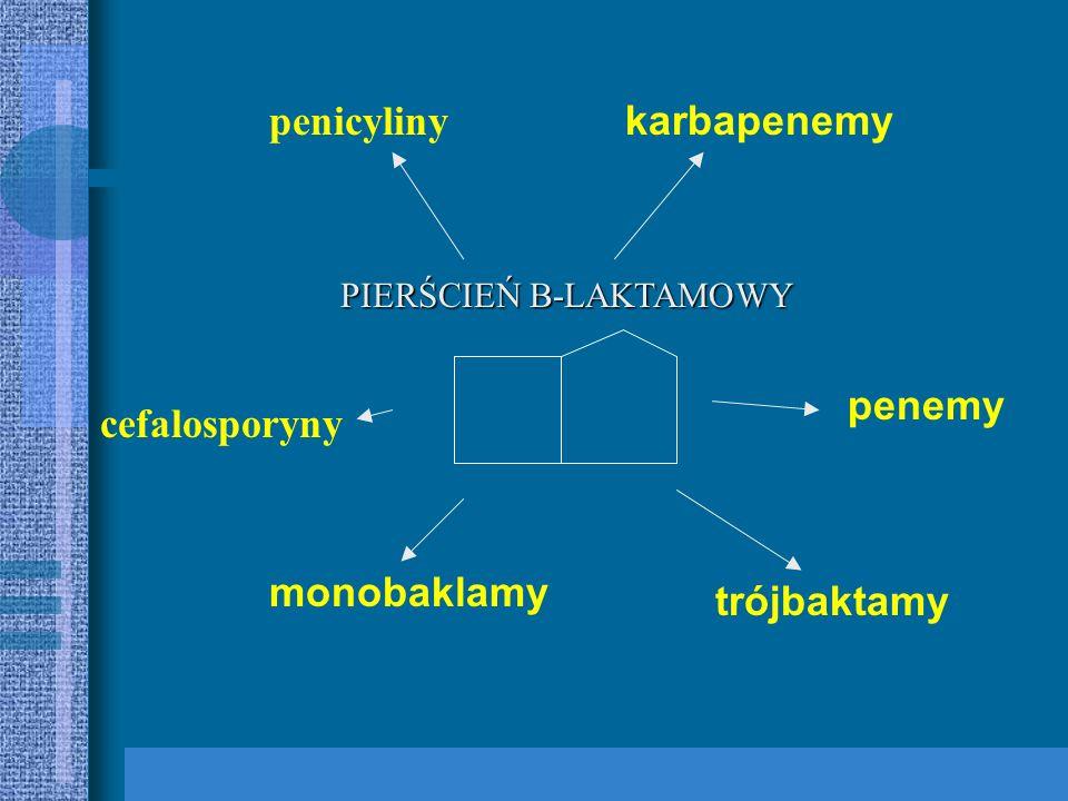 penicyliny karbapenemy penemy cefalosporyny monobaklamy