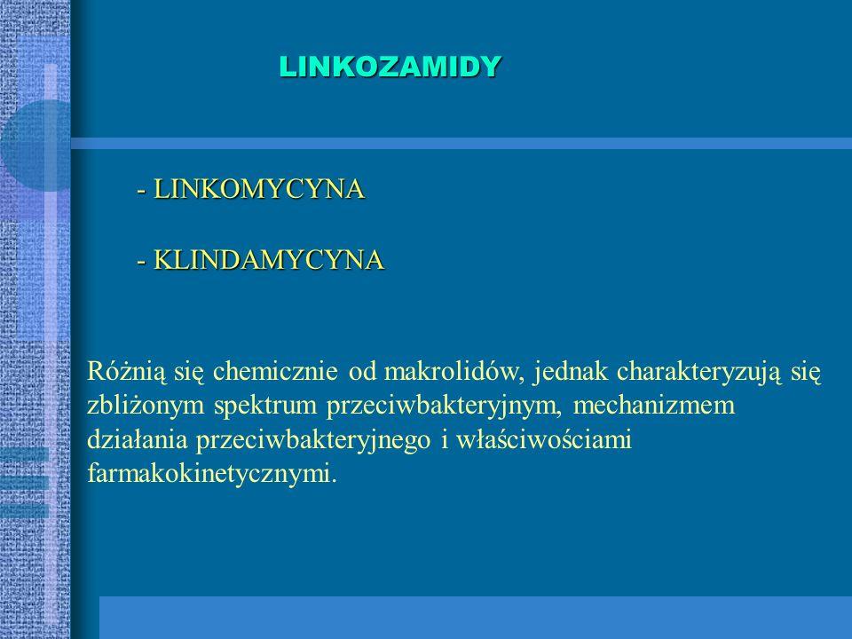 LINKOZAMIDY - LINKOMYCYNA. - KLINDAMYCYNA. Różnią się chemicznie od makrolidów, jednak charakteryzują się.