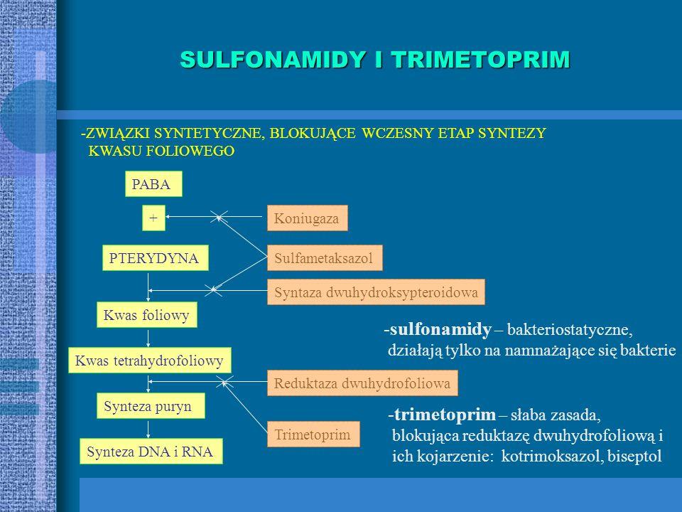 SULFONAMIDY I TRIMETOPRIM