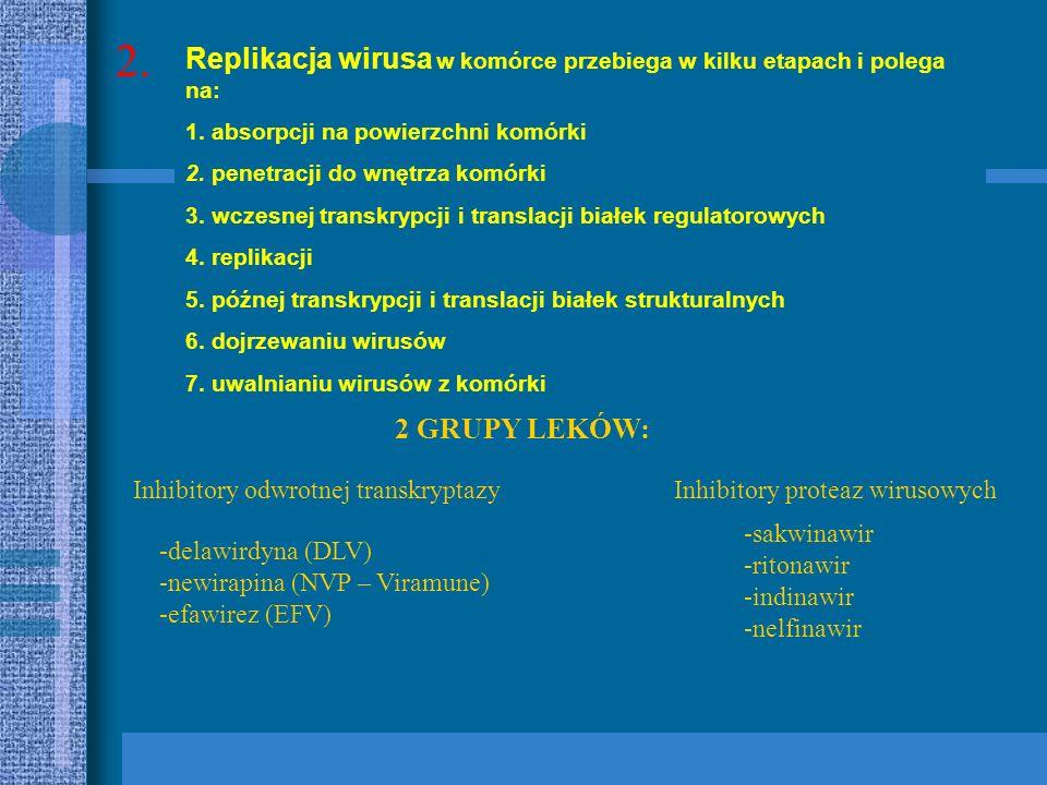 2. Replikacja wirusa w komórce przebiega w kilku etapach i polega na: