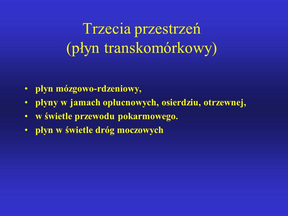 Trzecia przestrzeń (płyn transkomórkowy)