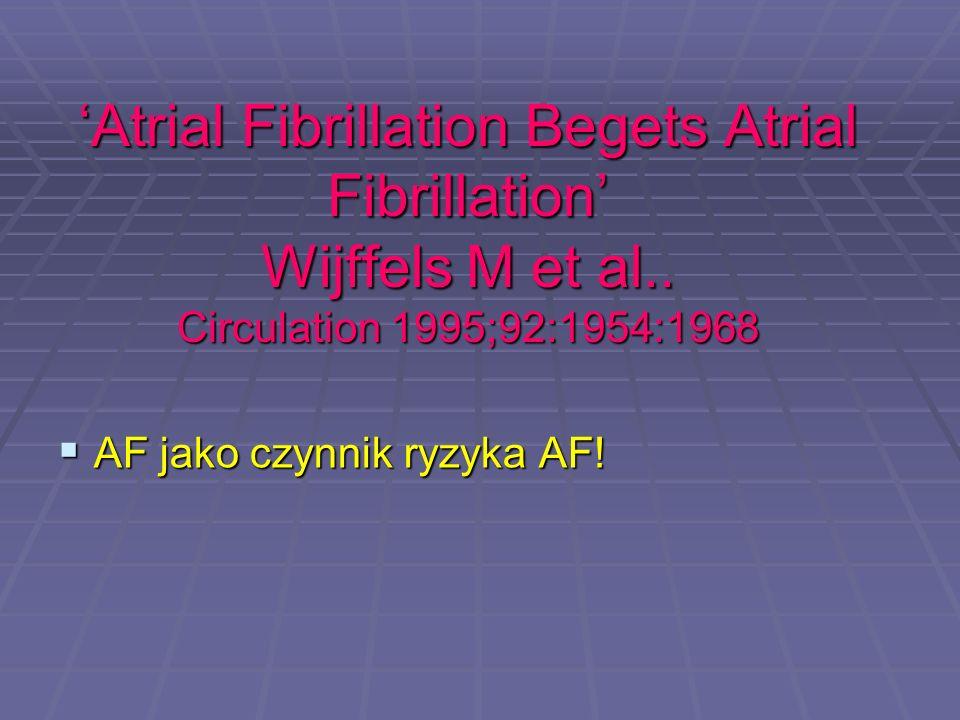 'Atrial Fibrillation Begets Atrial Fibrillation' Wijffels M et al