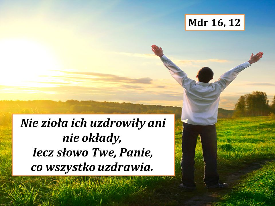 Nie zioła ich uzdrowiły ani nie okłady, lecz słowo Twe, Panie,