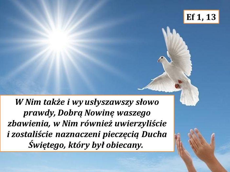 i zostaliście naznaczeni pieczęcią Ducha Świętego, który był obiecany.