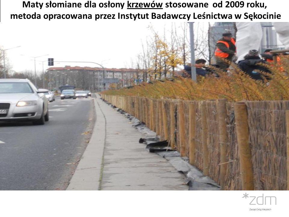 Maty słomiane dla osłony krzewów stosowane od 2009 roku,