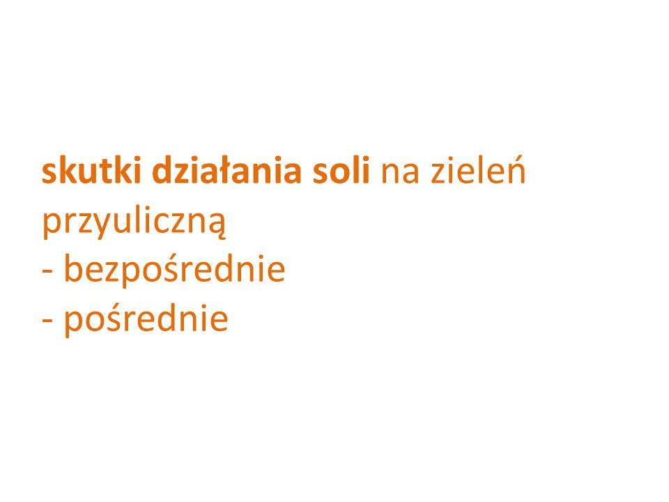 skutki działania soli na zieleń przyuliczną - bezpośrednie - pośrednie