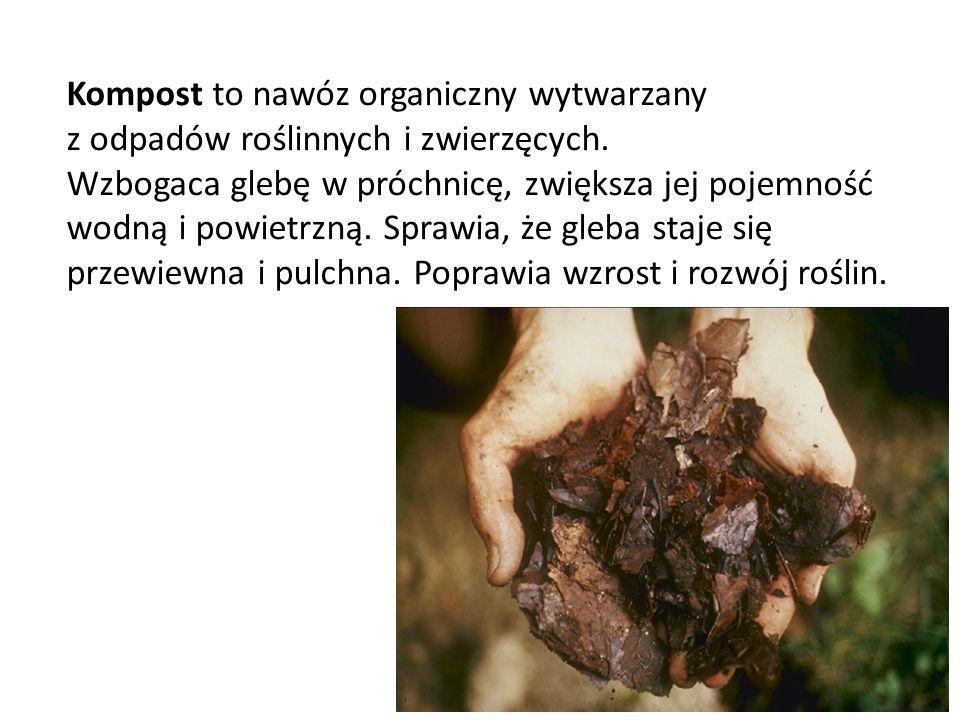 Kompost to nawóz organiczny wytwarzany z odpadów roślinnych i zwierzęcych.