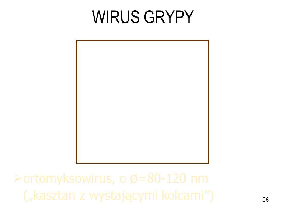 WIRUS GRYPY ortomyksowirus, o ø=80-120 nm