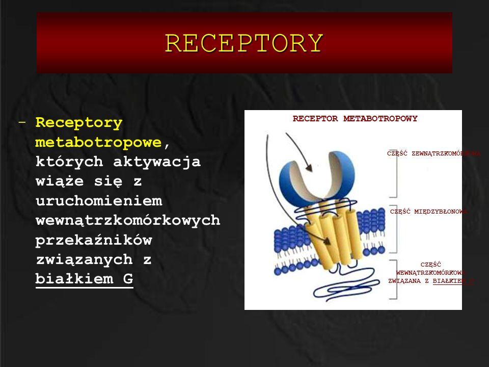 RECEPTORY Receptory metabotropowe, których aktywacja wiąże się z uruchomieniem wewnątrzkomórkowych przekaźników związanych z białkiem G.