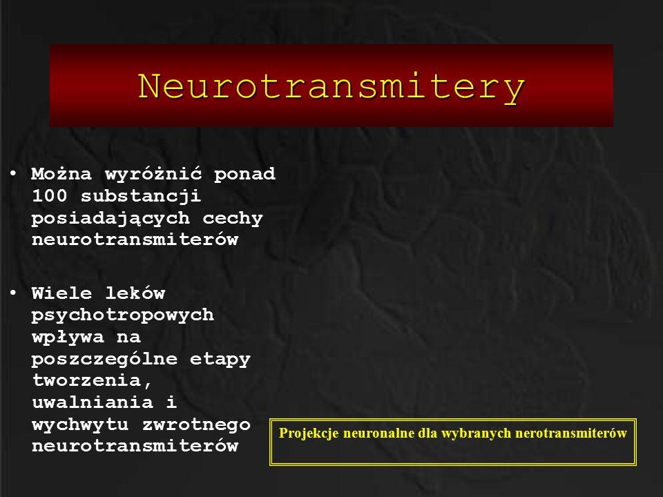 Projekcje neuronalne dla wybranych nerotransmiterów
