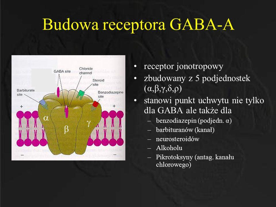 Budowa receptora GABA-A
