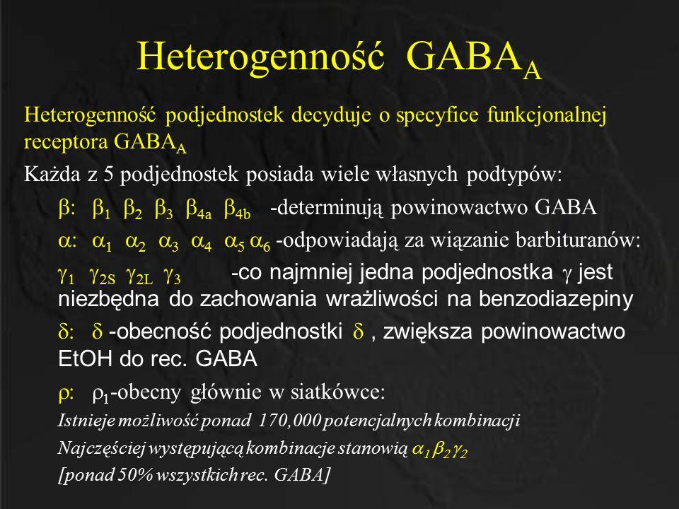 Heterogenność GABAA Heterogenność podjednostek decyduje o specyfice funkcjonalnej receptora GABAA.