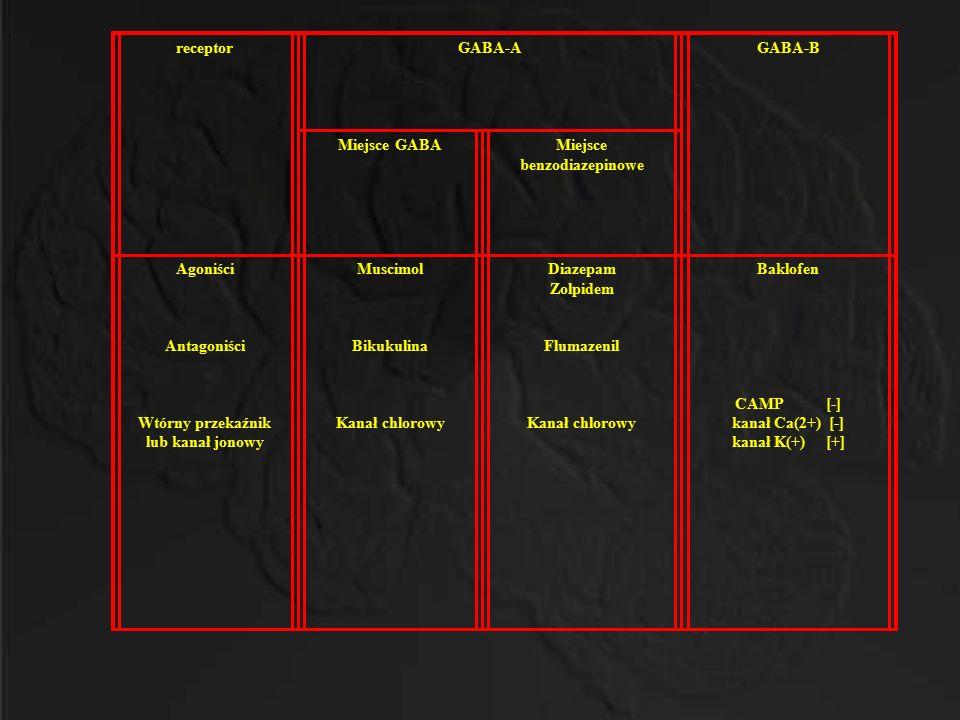 Miejsce benzodiazepinowe Wtórny przekaźnik lub kanał jonowy