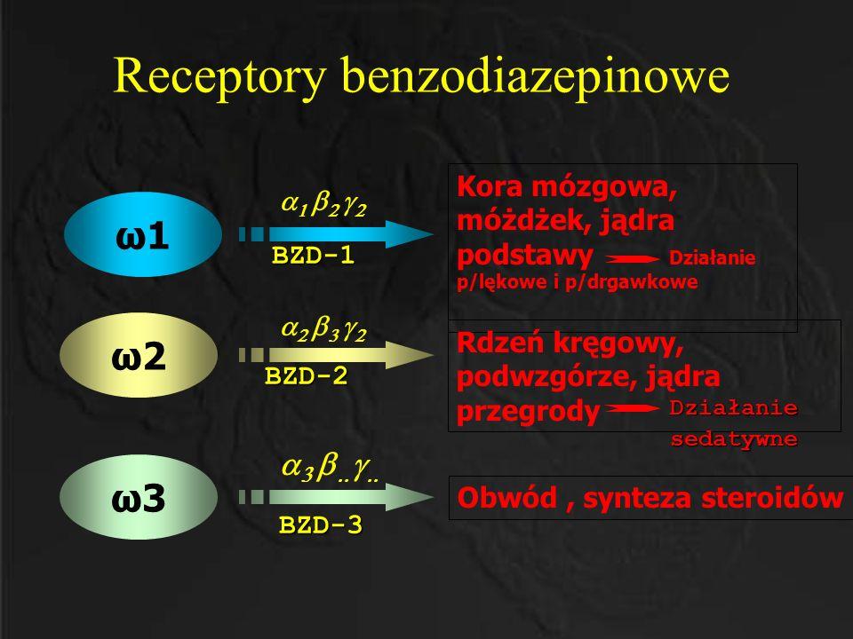 Receptory benzodiazepinowe