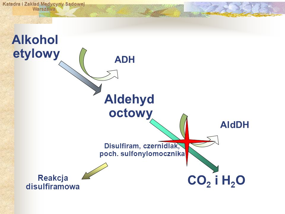 Disulfiram, czernidlak, poch. sulfonylomocznika Reakcja disulfiramowa