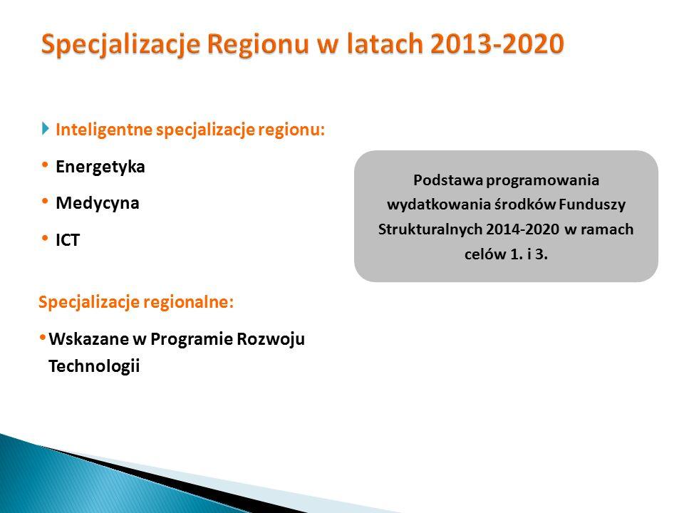 Specjalizacje Regionu w latach 2013-2020