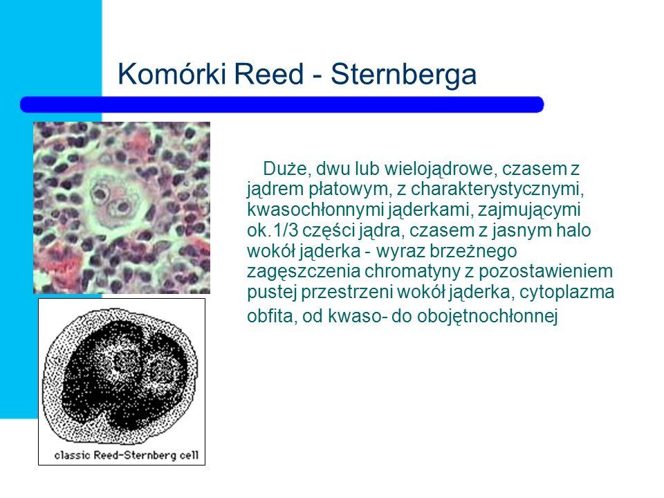 Komórki Reed - Sternberga