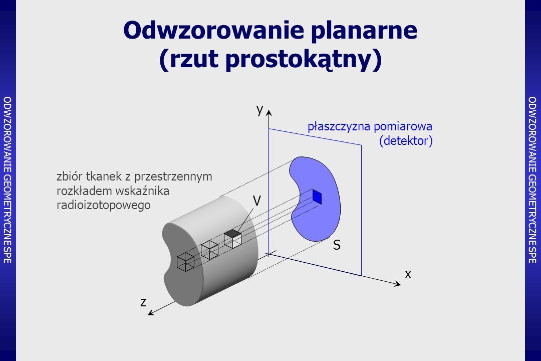 Odwzorowanie planarne (rzut prostokątny)