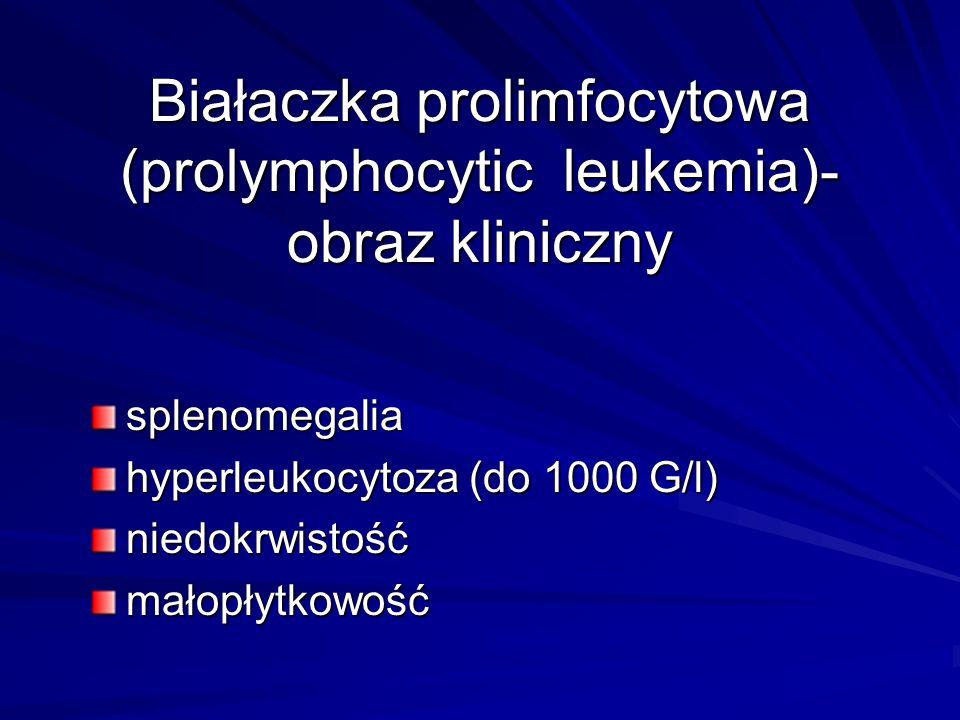 Białaczka prolimfocytowa (prolymphocytic leukemia)-obraz kliniczny