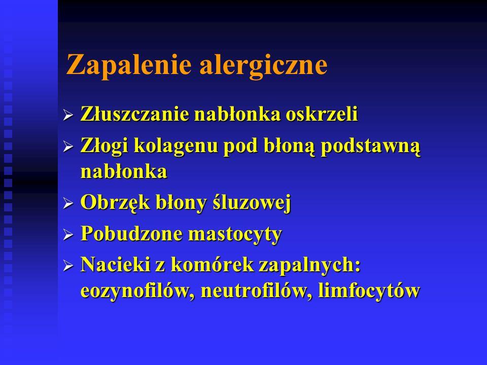 Zapalenie alergiczne Złuszczanie nabłonka oskrzeli